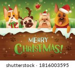 merry christmas  dogs and... | Shutterstock .eps vector #1816003595