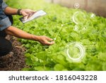 Small photo of Farmer Plantation checking quality by tablet agriculture modern technology Concept. Smart farming, using modern technologies in agriculture. Man agronomist farmer with digital tablet computer.