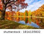 Autumn Foliage In Alexander...