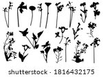 silhouettes of different... | Shutterstock .eps vector #1816432175