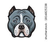 american bully dog isolated... | Shutterstock .eps vector #1816825238