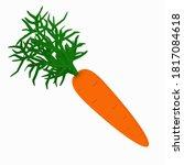 Illustration Of Orange Carrots...
