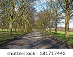 a pathway through a row of... | Shutterstock . vector #181717442