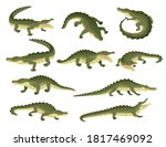 Set Of Green Crocodile...