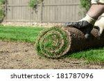 sod for new lawn | Shutterstock . vector #181787096
