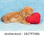 little cute kitten lying on the ... | Shutterstock . vector #181797686