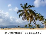 tropical island with coconut... | Shutterstock . vector #181811552