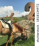Horse Grazes On Grass At...