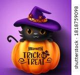 Halloween Cat Vector Concept...