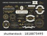 vintage typographic decorative... | Shutterstock .eps vector #1818875495