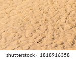 Sand Surface With Many...
