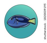 Royal Blue Tang Vector On...