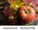 Orange Natural Round Pumpkin On ...