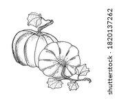 outline vector pumpkins... | Shutterstock .eps vector #1820137262