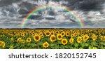Beautiful Rainbow Over...