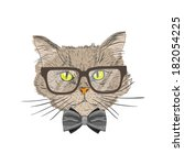 portrait of a cat with bow tie... | Shutterstock . vector #182054225