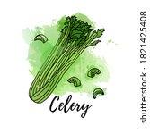 illustration of green celery.... | Shutterstock .eps vector #1821425408
