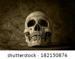 Still Life With A Skull Concep...