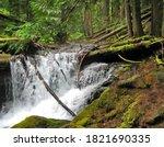 Panther Creek Falls Near Carson ...