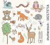 set of wild animals. hand drawn ... | Shutterstock .eps vector #182175716