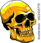 Gold Human Skull On White...