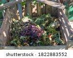The Compost Bin In The Garden...