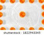 Beautiful Marigold Petals Macro ...