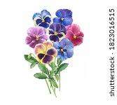 Bouquet Of The Blue Garden...