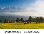 on a farm in the high mountains ...   Shutterstock . vector #182350022