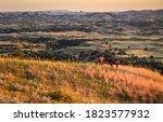 Small photo of Theodore Roosevelt National Park, North Dakota