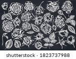 vector set of hand drawn chalk...