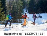Three Travelers  Male Skier...