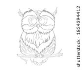 Drawing Of An Owl For Coloring...