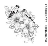 hand drawn goldfinches sitting...   Shutterstock .eps vector #1824558935