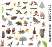 animals and birds isolated on a ... | Shutterstock . vector #182472806