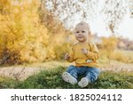 Adorable Little Boy Sits On Th...