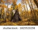 Teepee In Woods Hiking On Trail ...