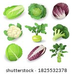 set with different kinds of... | Shutterstock .eps vector #1825532378