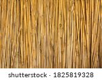 Dry Reed Fence. Background Fro...