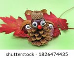 Funny Owl From Pine Cone And...