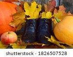 Autumn Fallen Maple Yellow...