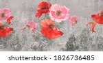 Poppies Flowers Illustration....