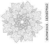 Natural Mandala Of Oak  Birch ...