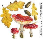 Autumn Leaves And Mushrooms In...