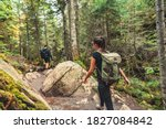Hikers Walking On Forest Trail...