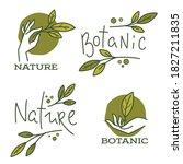 doodle organic leaves  hand ... | Shutterstock .eps vector #1827211835