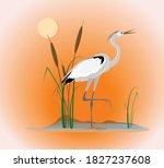 an elegant heron bird stands on ...   Shutterstock .eps vector #1827237608