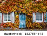 Small photo of Old vintage rustic German shabby small house with colorful grapevine-covered wall. Autumn red leaves of Virginia creeper vine. Abstract Ancient overgrown house with blue wooden shutter, door.