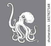 Octopus Vintage Handrawn Vector ...