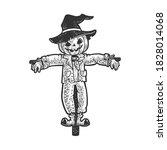 Halloween Pumpkin Scarecrow...